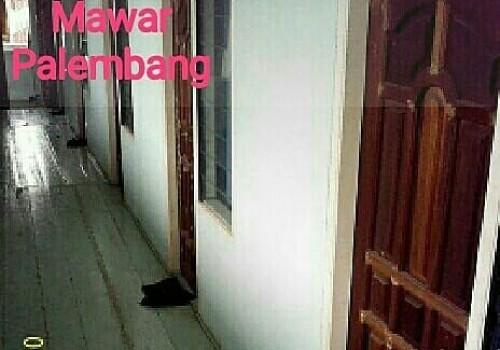 Kost Mawar, Palembang
